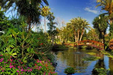 Dni relaksu Botánico